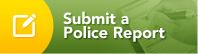 Submit a Police Report
